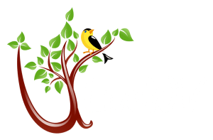 ULiveWV