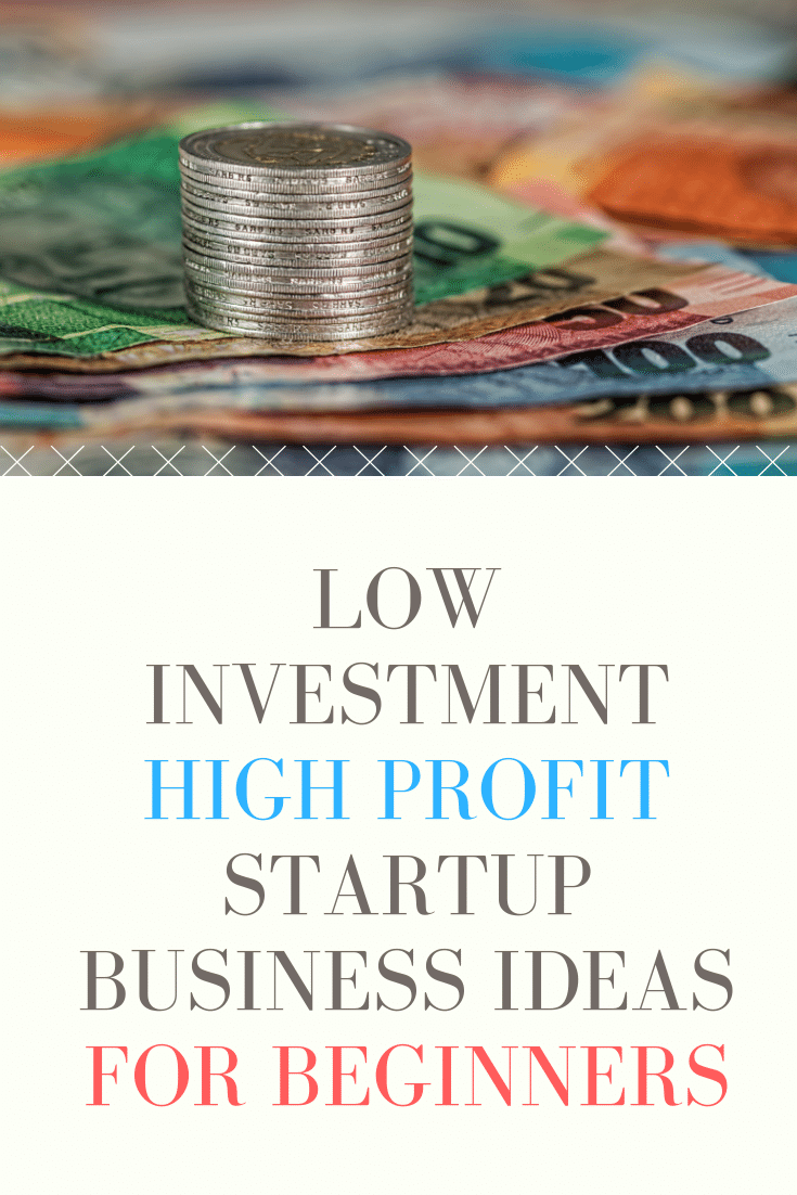 Low Investment High Profit Startup Business Ideas For Beginners