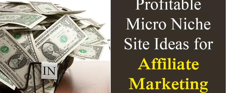 Micro Niche Site Ideas for Affiliate Marketing