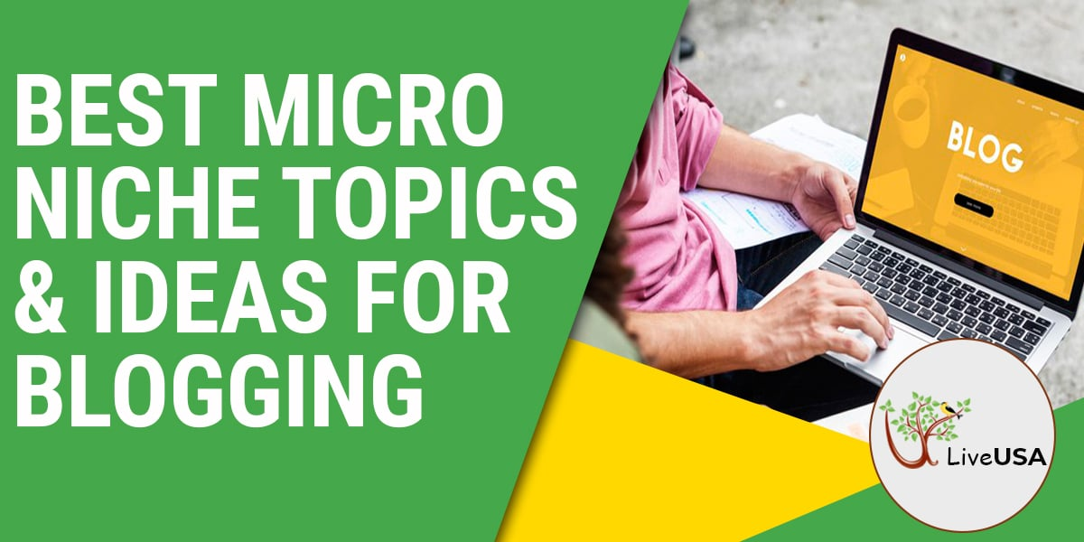 Best Micro Niche Topics & Ideas for Blogging