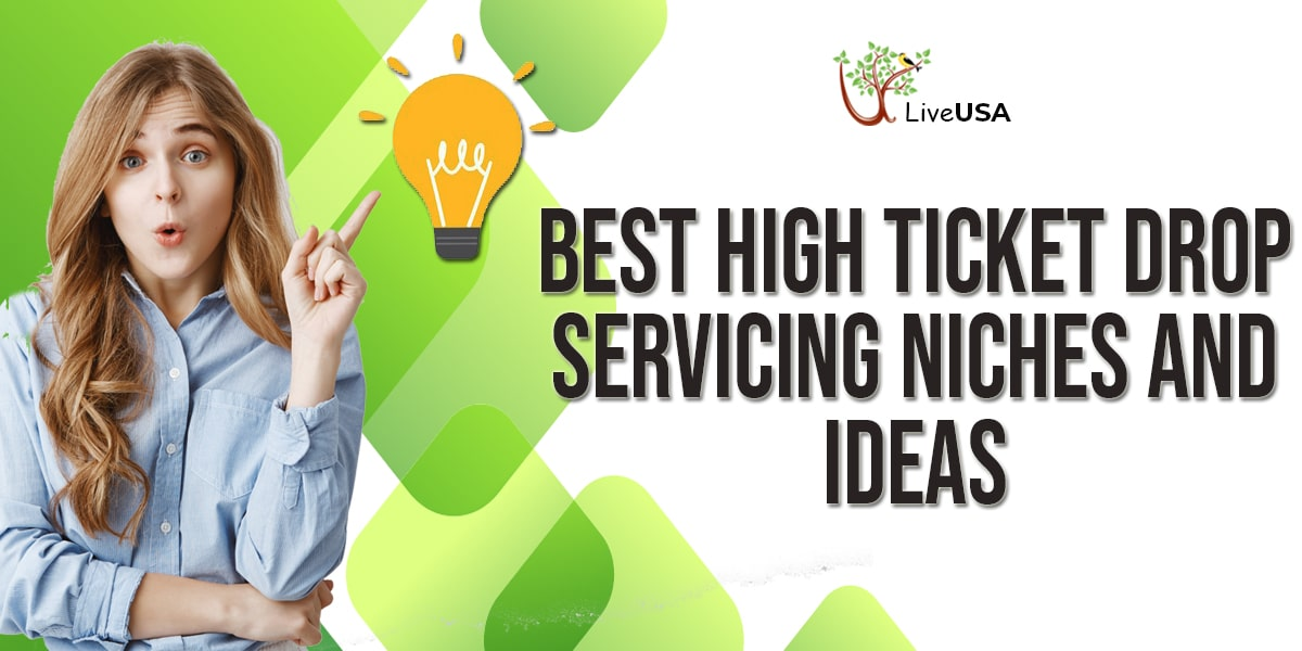 Best High Ticket Drop Servicing Niches and Ideas