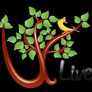 ULiveUSA Team